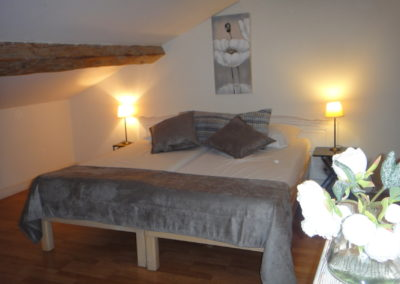 Chambre-location-semaine-arles